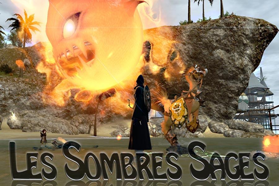 Sombre Sage :: Addon DPS -Log parser FFXIV