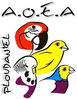 forum de l'amicale des oiseaux exotiques d'armorique Index du Forum
